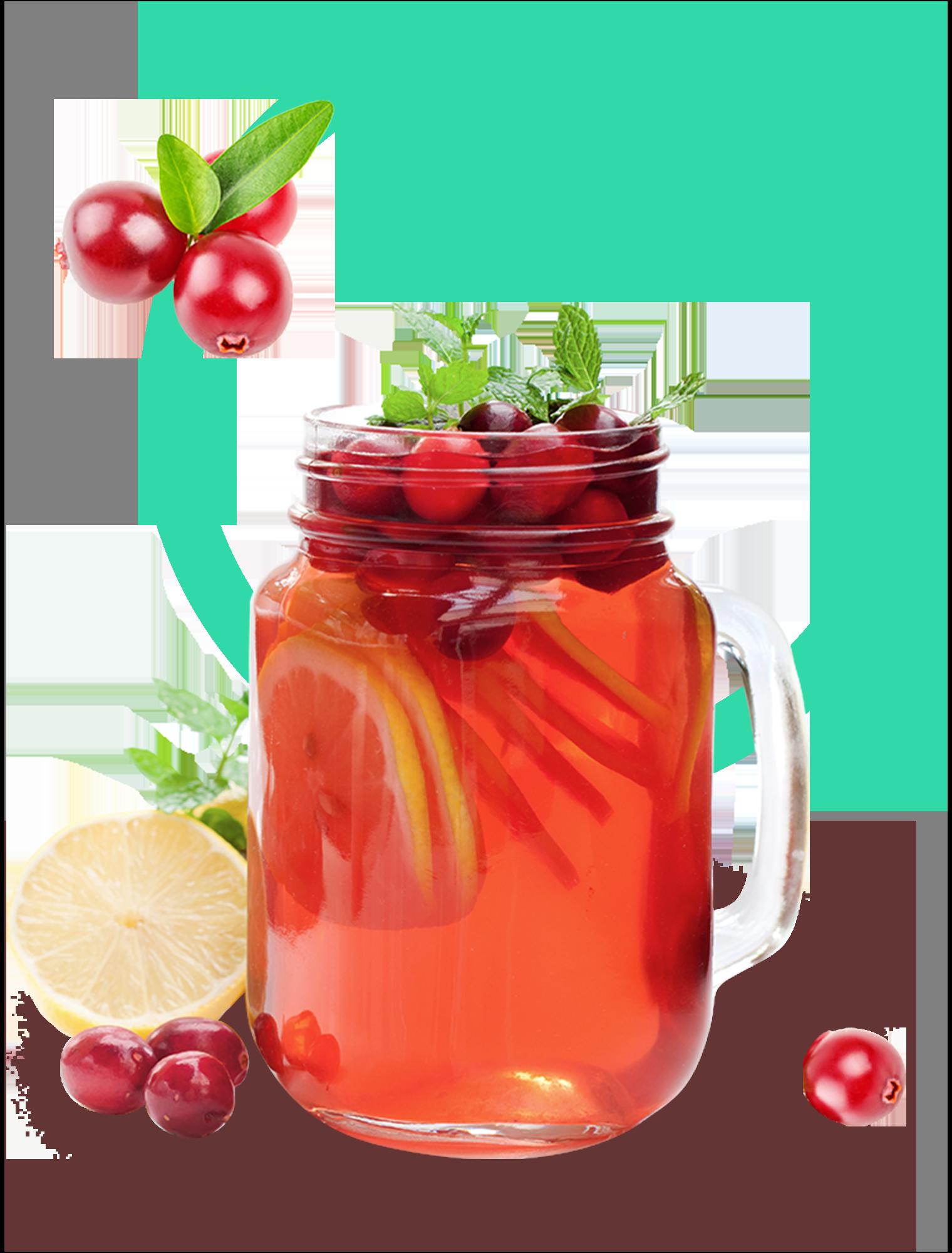 Cranberry Kombucha Glass